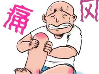 痛风是由单钠尿酸盐沉积所致的晶体相关性关节病,与嘌呤代谢紊乱和(或)尿酸排泄减少所致的高尿酸血症直接相关,特指急性特征性关节炎和慢性痛风石疾病,主要包括急性发作性关节炎、痛风石形成、痛风石性慢性关节炎