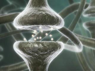 """癫痫即俗称的""""羊角风""""或""""羊癫风"""",是大脑神经元突发性异常放电,导致短暂的大脑功能障碍的一种慢性疾病。"""