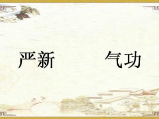 严新,四川江油东安乡福严村人,一位号称集中西医、气功、武术和特异功能于一身的气功师。严新首创了气功带功报告这一方式展,严谨的中国气功,开创气功科学的新天地。