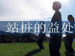站桩即身体如木桩站立不动,目的在于如木桩有根稳定,而非不动傻站。是中国武术体系中的一个重要组成部分。