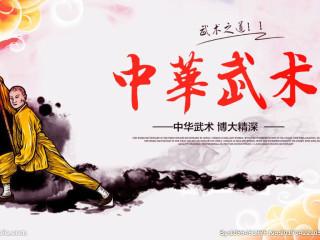 中国武术,以中国传统文化为基础的、停止(止)战斗(戈)的技术;是消停战事、维护和平的技术;是物质文明的保障和导向,带领修习者进入认识人与自然、社会客观规律的传统教化方式。