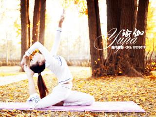 中医保健按摩教程丰胸瑜伽方法