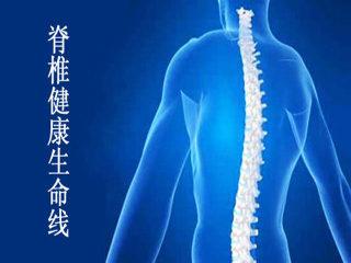 脊椎健康生命线