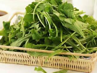 """野菜一般有着纯净的品质,是大自然的美妙馈赠,也是人与自然相生相伴的见证。野菜无污染、营养丰富、清新可口,是绝佳的食材之一。很多野菜都具有药用价值,俗话说""""偏方治大病""""。"""