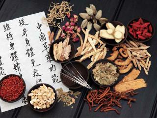 中医针灸麻润华三味针法、归原针法针灸