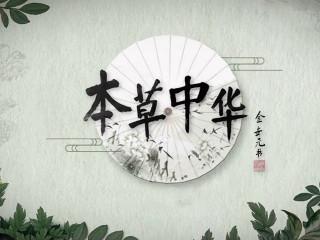 以轻松趣味的基调呈现富有传奇色彩的中华本草,讲述与人们生活息息相关的本草故事,寻访与中药有着深厚情感和羁绊的人物,展现他们截然不同的生活方式和处世态度,探究根植于中华文化中的生存智慧。